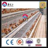 Tipo famoso do chinês e casa de galinha barata do ovo da camada/casa da exploração avícola (XGZ-GR010)