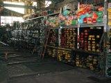 De Staaf van het staal/de Ronde Staaf/vlak Producten Snc836 van de Staaf/van het Staal