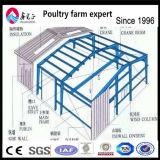 商業鶏の肉焼き器の養鶏場の家デザイン