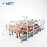 Piglets를 위한 주문을 받아서 만들어진 돼지 크레이트