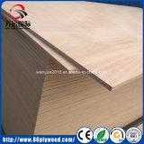 製造からの家具によってポプラのコアOkoumeの使用される合板