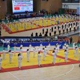 De gebruikte Matten van het Judo Tatami