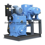Système de pompe de piston rotatoire de racines utilisé pour la déshydratation de vide