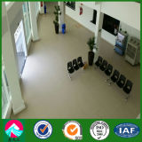 выставка Hall стальной структуры магазина 4s в Бразилии