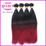 8A La virgen de alta calidad directamente de Malasia Brasil pelo de Perú el pelo al por mayor de tejido a dos tonos de color de cabello Ombre