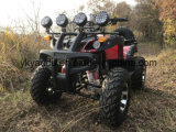 ディスクブレーキを持つシャフトによって運転される電気大人ATV