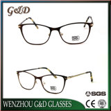 Neue Entwurfs-Produkt-Brille-Rahmen Eyewear optischer Metallrahmen