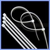 Plastikkabelbinder-unterscheidet sich Nylondraht-Klipp-Halterung-Material Größen-Kabelklemme-Halterung-Nylon-Kabelbinder