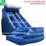 Gonflable mouiller la glissière d'eau gonflable commerciale de glissière à vendre (DJWSMD8000010)