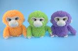 柔らかい詰められたプラシ天猿は3 Asst.をもてあそぶ