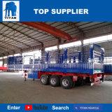 Titan-Fahrzeug - Behälter-Seiten-Ladevorrichtung der seitlichen Wand-40FT für Verkauf