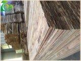 1220*2440 12/15/18 millimètre de noir de M. Glue Finger Joint Board/film de Brown a fait face au contre-plaqué pour la construction/béton