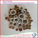 DIN934 écrous à tête hexagonale avec prix d'usine Grade8.8 10,9