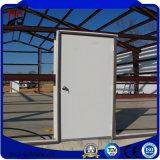 Edificios de acero de la estructura de la luz de la alta calidad y del bajo costo para el garage