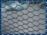 Гальванизированная шестиугольная ячеистая сеть, зеленая ячеистая сеть PVC шестиугольная
