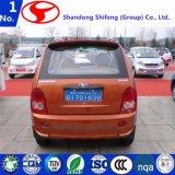 4 Tür 4 des Rad-4 Seater kleines elektrisches Miniauto