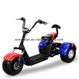 20ah 60V Big Power City the Coco Electric Scooter with EC Approval (es005-e)