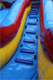 城販売Chsl708のための膨脹可能な水スライドか巨大で膨脹可能な水スライド