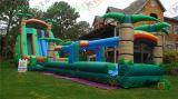 Neues aufblasbares Vergnügungspark-Schloss des Plättchen-2015 (SL-041)