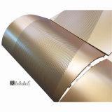 Aluminum en couleurs Panels avec Hyperbolic Designs pour Building Features
