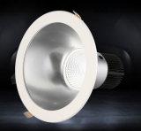 Boutique Hôtel à LED 100-240 V pilote Lifud 30W puces crie vers le bas la lumière