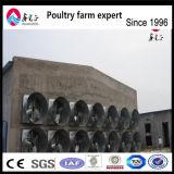 Aves de capoeira de frangos de corte de alimentação de Equipamentos Agrícolas Silo para casa de frangos de corte