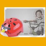 Bicyclette et casque de vélo, Cycle Helmet à vendre Mtv12