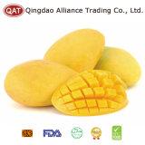 Export-gefrorene Standardmangofrucht würfelt mit gutem Preis