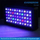 Evergrow 120W Dimmable LED Aquarium Light voor Koraalrif