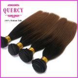 Quercyの毛のOmberカラー卸売のバージンのマレーシアの毛の拡張マレーシアのバージンの直毛は一等級の品質の人間の毛髪を編む