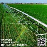 Système d'irrigation de canon d'arroseuse pour l'usage d'agriculture