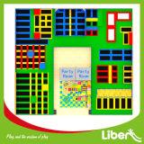 Parc de trempoline de Liben--Conception, fabrication, parc d'intérieur de trempoline de zone de ciel du numéro 1 d'Assemblée de champ