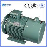 Energie - het Asynchrone AC van 3 Fase van de Omzetting van de Frequentie van de besparing B3 B5 B35 Reductiemiddel Met geringe geluidssterkte van de Snelheid van het Toestel van de Elektrische Motor (ly-280l4-2)