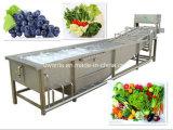 Rondella della bolla della verdura e della frutta di alta efficienza da vendere