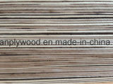 contre-plaqué de peuplier de 12mm pour les meubles et la décoration