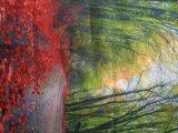 Tessuto della bandierina di stampa di /Knitted /Sublimation della Indicatore-Casella del raso