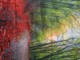 Ткань флага печатание /Knitted /Sublimation Свет-Коробки сатинировки