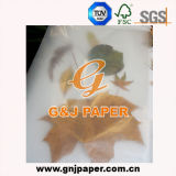 Impression personnalisée de bonne qualité des aliments pour la vente de papier d'enrubannage
