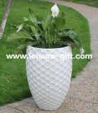 Fo-319 vasos de plantas de ovos de flores de fibra de vidro