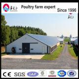 애완 동물 가구 닭 감금소 닭장 Dfc008