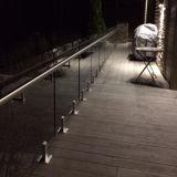Популярный алюминиевый стеклянный Spigot для стеклянного Railing (HR1300W-1A)