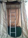 Tenda superiore del tetto telescopica/scaletta di punto