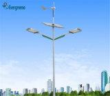 Tous dans un réverbère solaire séparé par 80W solaire de réverbère de la vente DEL