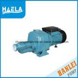 DP-Serien-elektrischer Hochdruckstrahlen-selbstansaugende Wasser-Pumpe