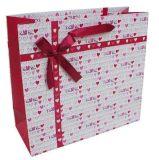 Sacchetti caldi del regalo del documento di vendita per vendita al dettaglio (FLP-8973)