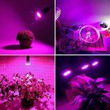60W, die volles Spektrum LED Glühlampe wachsen, wachsen Pflanzenlicht