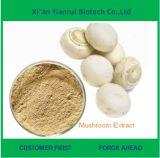 Выдержка гриба кнопки высокой очищенности чисто естественная белая