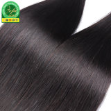 Guangzhou-Lieferanten-schwarze Jungfrau-menschlicher malaysischer Haar-Einschlagfaden