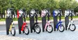 Популярные 300W E скутер в Европе на рынке (ES1201 соответствует ожидаемому)