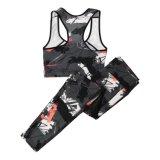 Conjunto de Fitness Mulheres Quick-Dry Ioga Conjunto de lingerie Sportwear